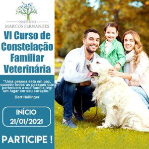 CURSO CONSTELAÇÃO FAMILIAR VETERINÁRIA ON-LINE